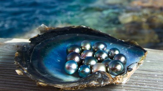 Pearls of Wisdom: 10 Facts About Pearls